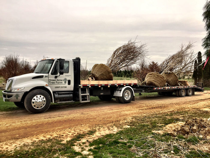 Mixed Load of Deciduous Material Headed to Pontiac Nursery