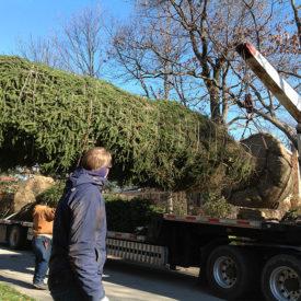 Unloading with Crane
